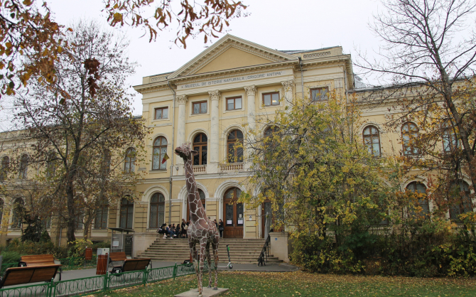 """Grigore Antipa"" National Museum of Natural History Photo: Crișan Andreescu"