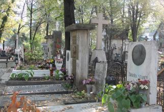 The Writers'Alley in Bellu Cemetery Photo: Crișan Andreescu