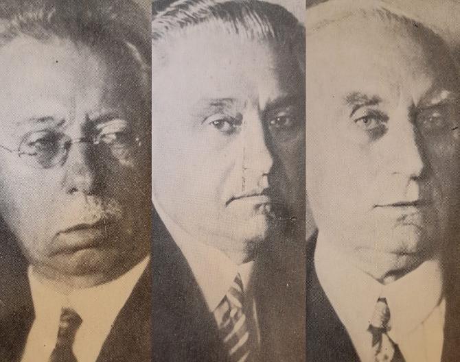 Frații Ștefan, Nicolae și Mina Minovici