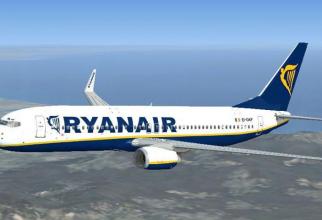 avion_rayner