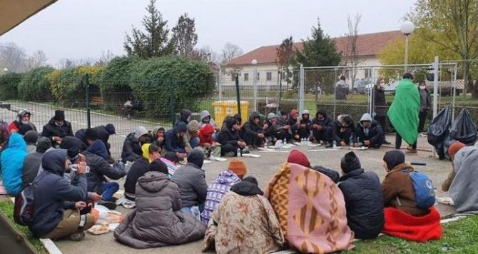 migranti_timisoara