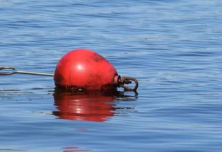 geamandura marinar salvat in ocean