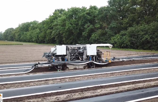 Robotul culegător de sparanghel îi înlocuiește pe muncitorii sezonieri din Germania