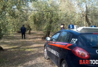 Italia. Român, ucis brutal sub ochii soției: Trupul său neînsuflețit, abandonat într-o magazie
