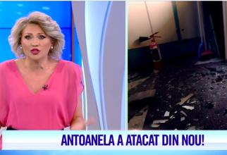 Mirela Vaida în lacrimi, după ce femeia dezbrăcată a atacat din nou platoul Acces Direct (Sursa: Antena 1)