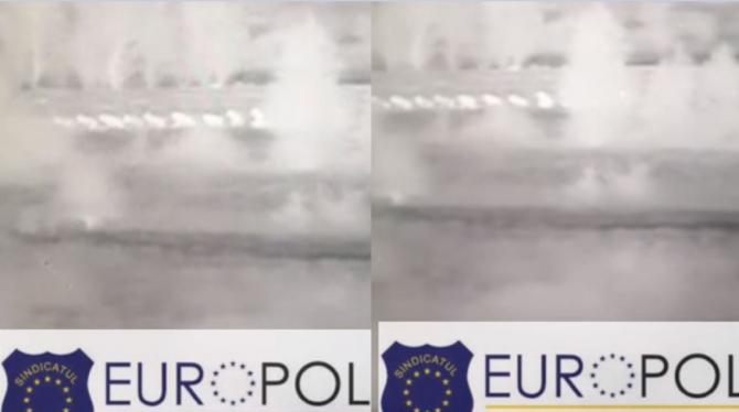 Imagini ireale cu migranți care au încercat să păcălească poliția. Bărbații s-au prefăcut că sunt oi