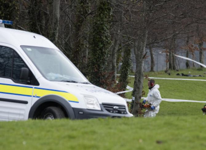 """Muncitor român, ucis într-un parc din Dublin """"A fost ghemuit la pământ și bătut cu bestialitate!"""" - FOTO: Thejournal.ie"""