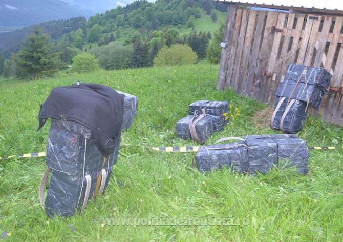 S-au tras mai multe focuri de arma la granița României