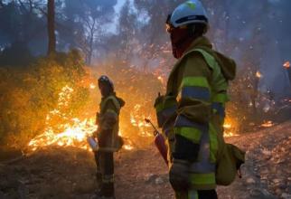 Franța. Un incendiu de vegetaţie a provocat pene de curent în Spania şi Portugalia. Sute de pompieri au intervenit
