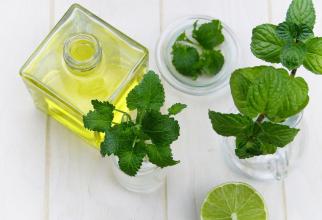 Menta pentru sănătate şi pentru casă: 12 utilizări ingenioase ale acestei plante (sursa foto: Pixabay)