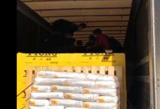 Opt străini au încercat să intre ilegal în ţară. Erau ascunși într-un automarfar, condus de un șofer sârb