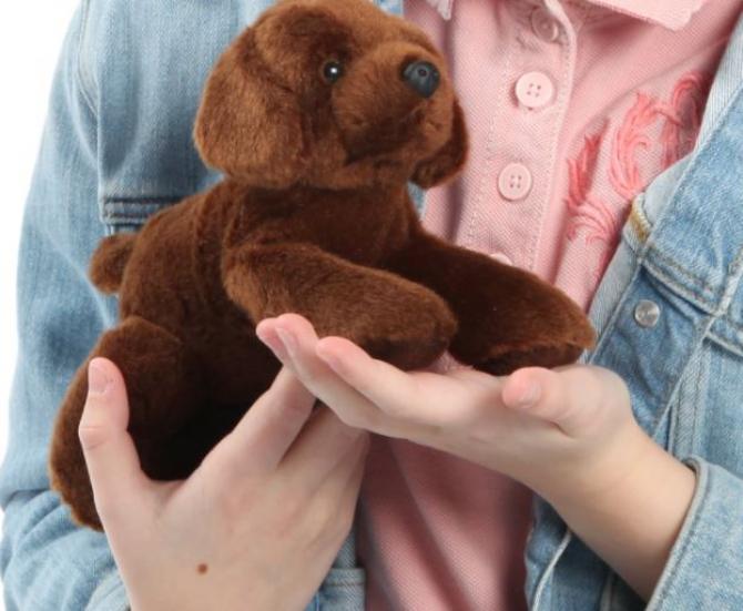 O româncă şi-a abandonat fetiţă de 6 ani la o vecină, pentru că voia să îşi refacă viaţa