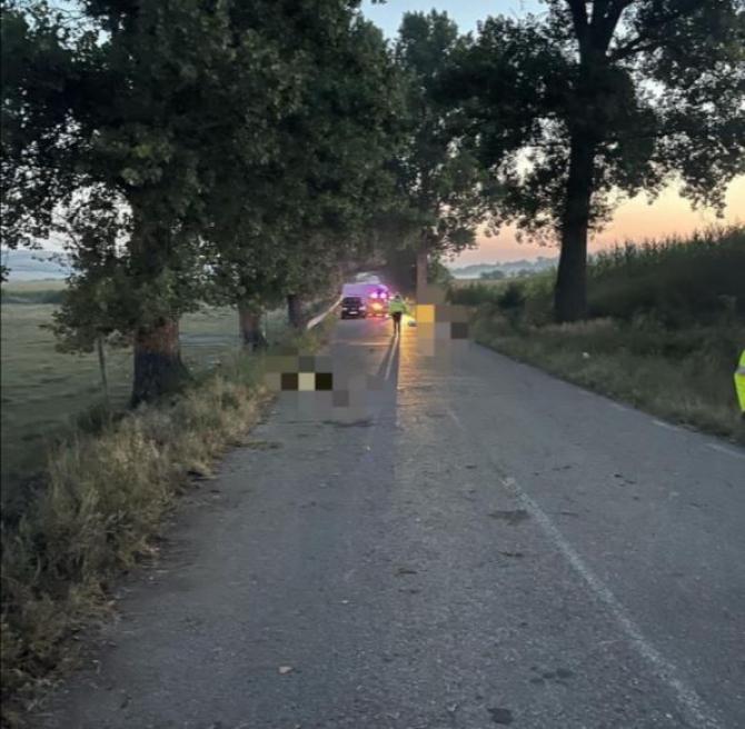 Accident tragic. Trei ROMÂNI au murit, după ce maşina în care se aflau a intrat într-un copac  Sursa - ziaruldevrancea