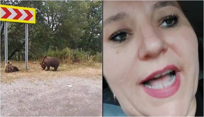 Diana Șoșoacă s-a transformat în avocata urșilor. Senatoarea i-a certat pe localnici că-i alungă, în loc să-i hrănească - VIDEO