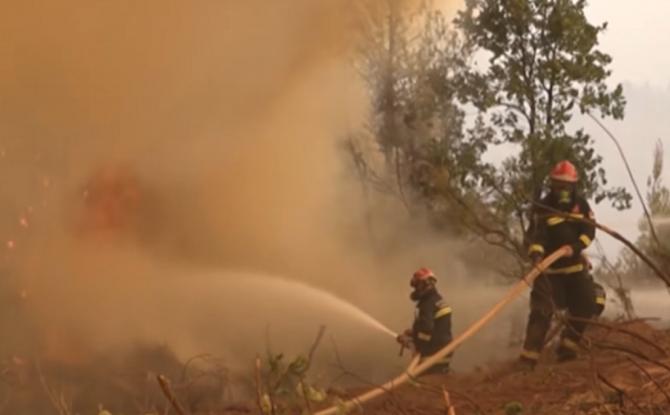"""Incendiile continuă să mistuie Grecia: """"Nu știm ce ne va aduce ziua de mâine. Suntem cu toţii disperaţi"""""""