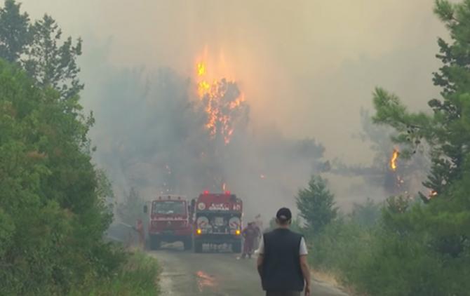 """Marinar român, martor la incendiile din Turcia: """"Încercau să stingă incendiul cu mâinile goale"""""""