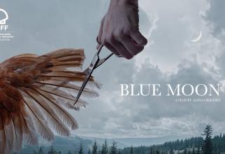 """Filmul românesc """"Blue Moon"""", premiat în Spania"""