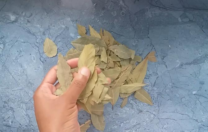 Frunzele de dafin - medicul la îndemână din dulap: Adăugă o linguriță de oțet de mere iar rezultatul te va șoca