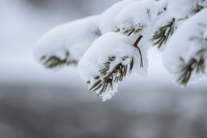 A nins ca în povești în România. Stratul de zăpadă a depășit 5 centimetri