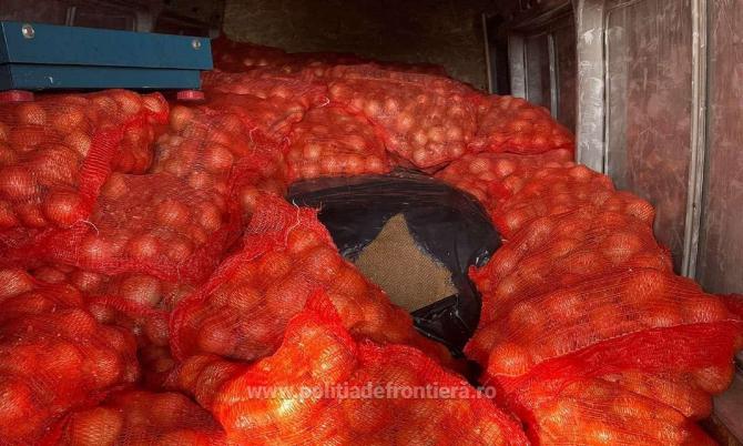 Un șofer român de microbuz a ascuns 800 de kilograme de tutun într-un transport de ceapă din Bulgaria